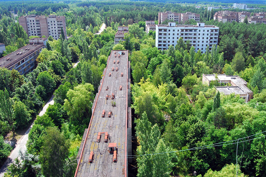 Ukraine's Ghost Town , Pripyat reclaimed by the forest