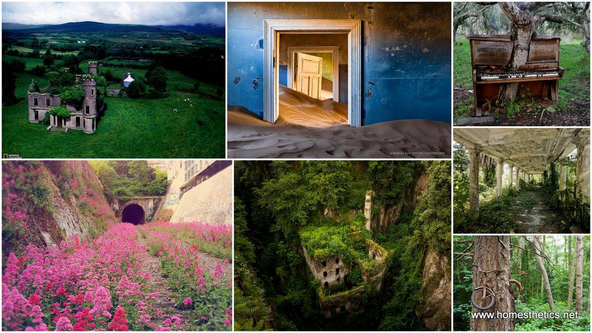 21 Snapshots of Abandoned Places That Have Been Conquered by Nature1