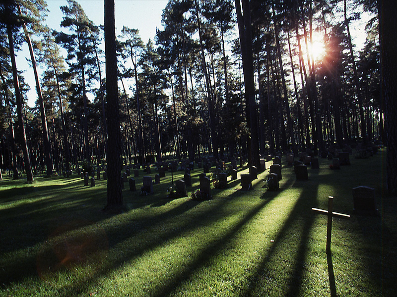 Gallery03_WCemetary_01_800x600
