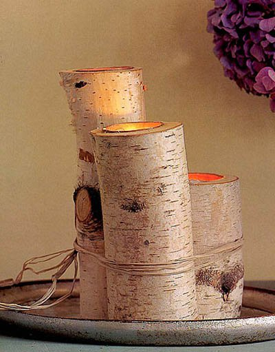 23 Creative Craft Ideas- How To Use Tree Branches-HOMESTHETICS (5)