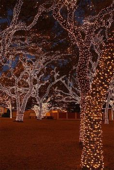 27 DIY Christmas Outdoor Decorations Ideas You Will Want To Start-homesthetics (3)