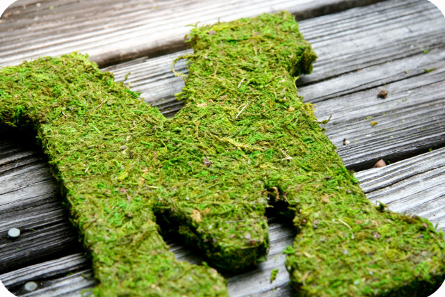 MOSS-COVERED-LETTERS