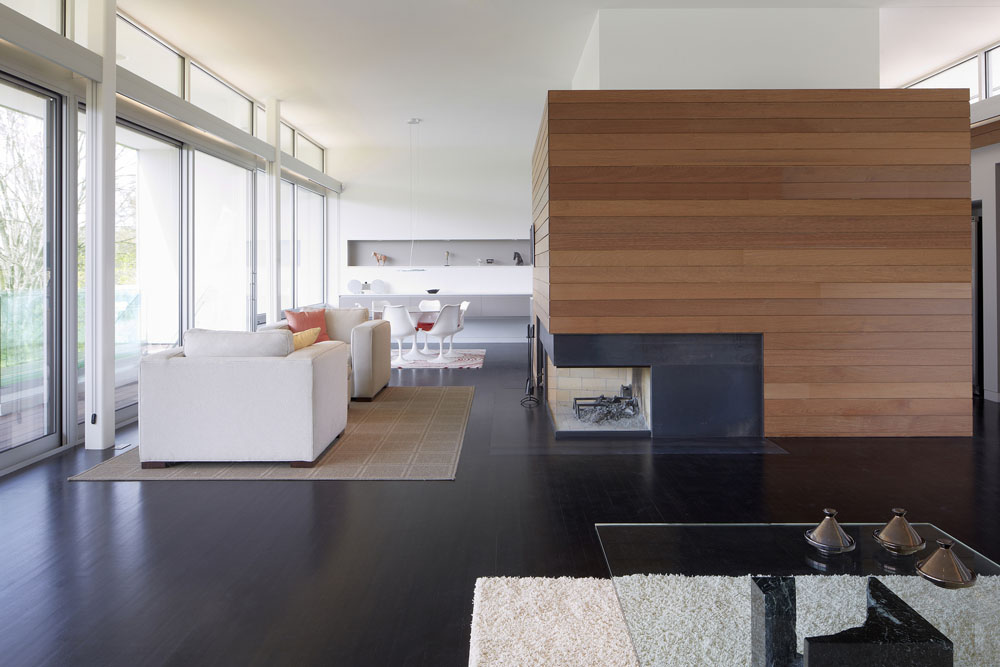 Simplicity Expressed in Riverview Home Enhanced by Natural Panoramas  homesthetics magazine (3)