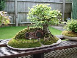 The Most Beautiful And Unique Bonsai Trees In The World-homesthetics (32)