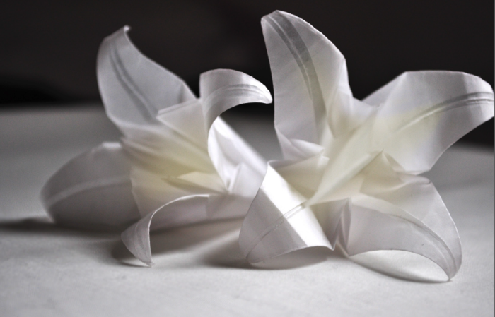 18 Of The Most Extraordinary Examples of Origami Paper Art homesthetics (1)