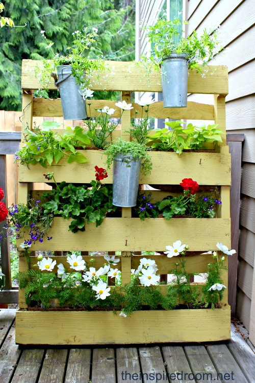 Recycled Wooden Pallets Sheltering Greenery