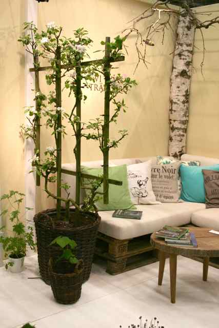 Bring Greenery Inside With a Winter Potted Garden