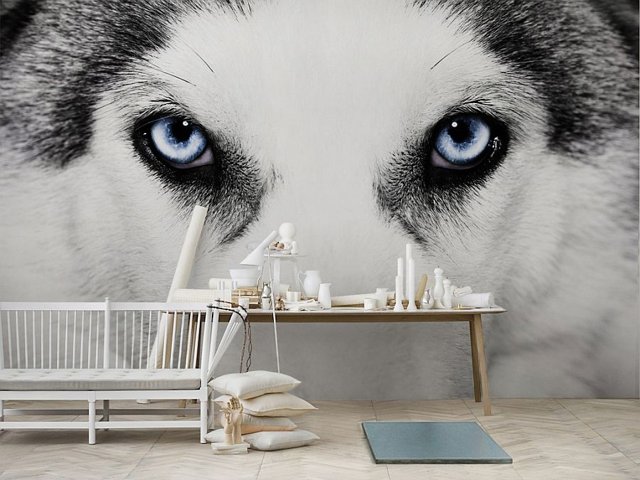 30 Of The Most Incredible Wall Murals Designs You Have Ever Seen (26)