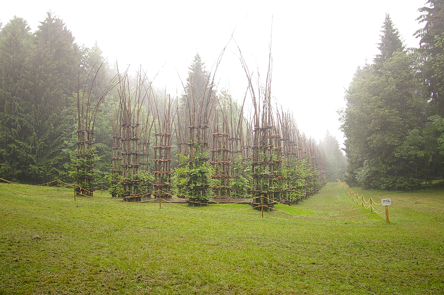 Whimsical Fairy Tale Cathedral Composed Out Of Living Breathing Trees homesthetics (4)