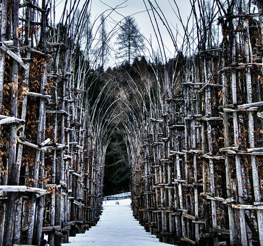 Whimsical Fairy Tale Cathedral Made of Trees That Breathe and Evolve Into Art