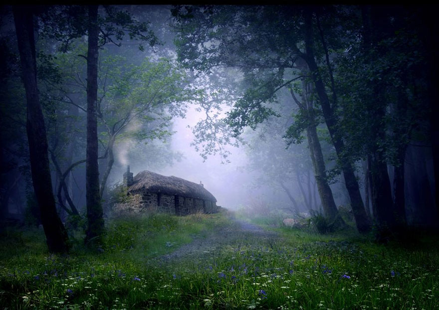 20 Perfect Lonely Little Houses Blending in Nature For The Quiet Calm Solitary Souls  homesthetics (13)