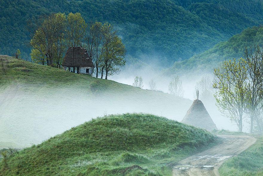 Perfect Lonely Little Houses Blending Nature For The