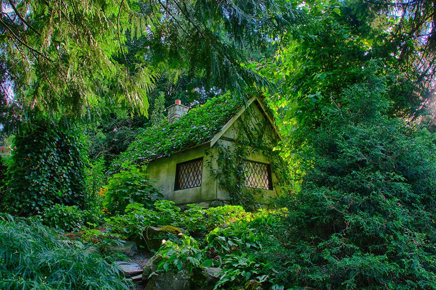 20 Perfect Lonely Little Houses Blending in Nature For The Quiet Calm Solitary Souls  homesthetics (16)