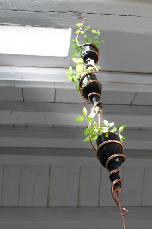 suspended wine bottle planter with copper wire