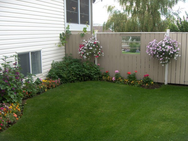 How to Use Old Windows In Your Garden and Yard homesthetics decor (11)