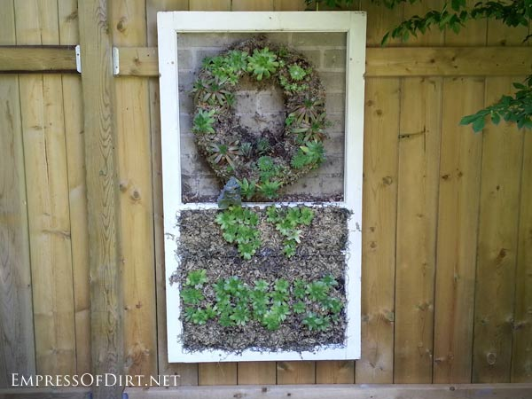 How to Use Old Windows In Your Garden and Yard homesthetics decor (13)