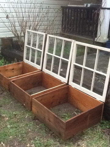 How to Use Old Windows In Your Garden and Yard homesthetics decor (5)