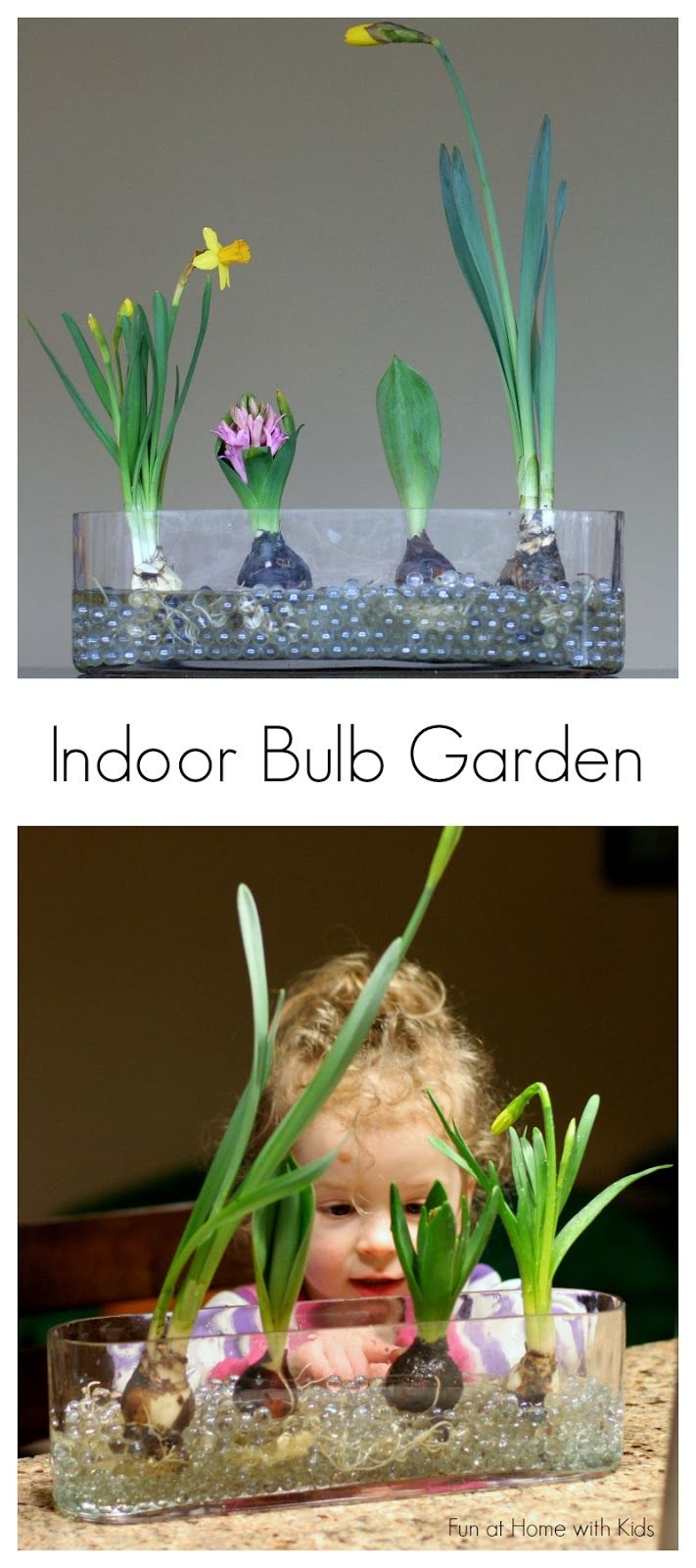 Invite Nature In With 20 Incredible Indoor Plants Ideas-homesthetics (19)