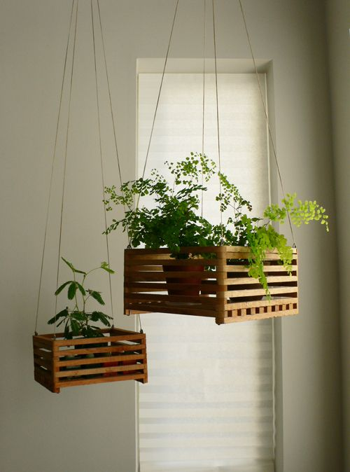 Invite nature in with 31 incredible indoor plant ideas for Indoor plant ideas