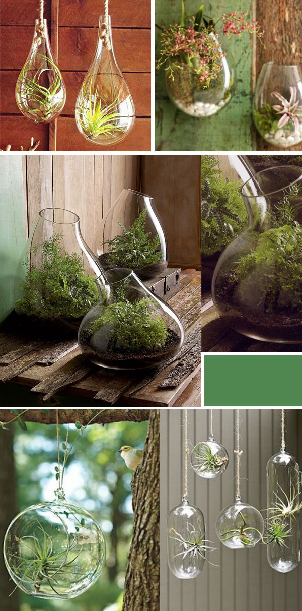 Invite Nature In With 20 Incredible Indoor Plant Ideas-homesthetics (26)