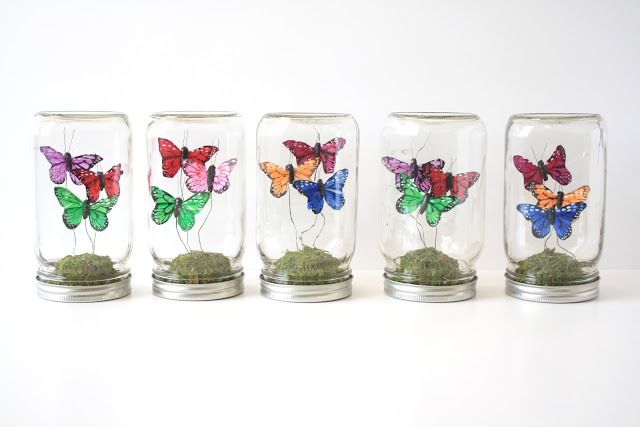 MAKE FAUX BUTTERFLY TERRARIUMS
