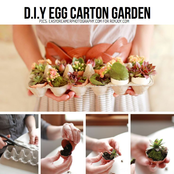 Unusual Eggshells Projects and How To Use Them In Everyday Life-homesthetics.net (3)