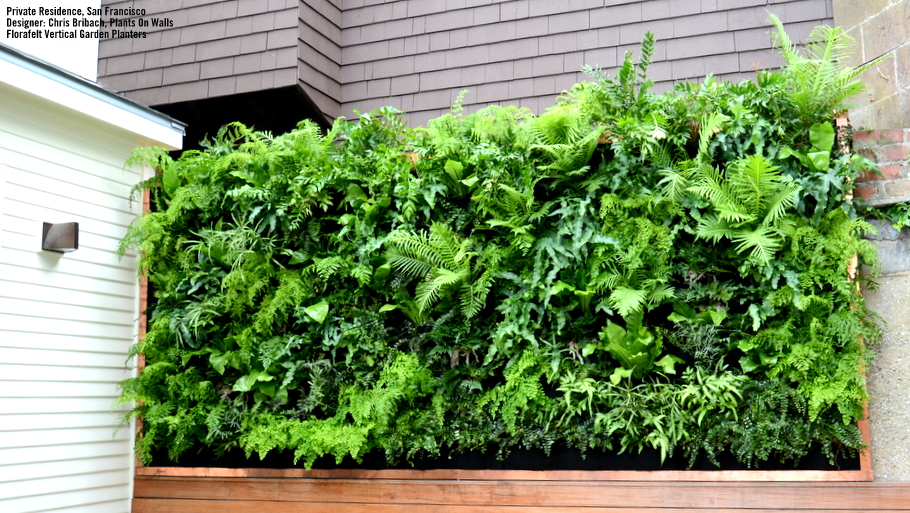 25 mesmerizing vertical garden ideas that will refresh - How to make a living wall ...