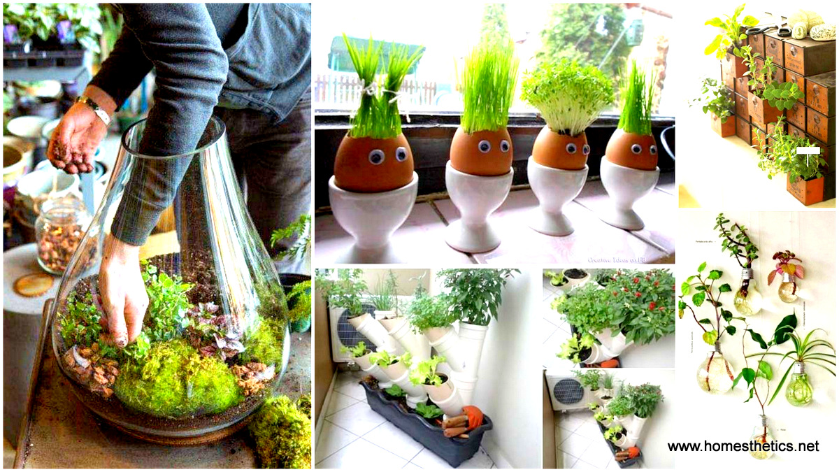 25 smart miniaturized indoor garden projects that you would really love - Diy Indoor Garden