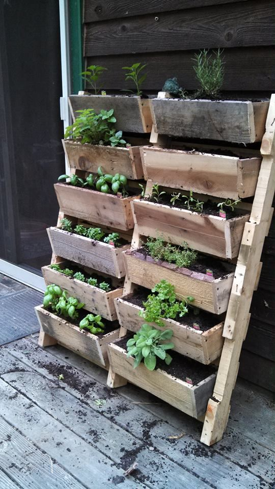 21 Outrageously Smart Recycled Pallet Crafts That You Should Try homesthetics decor (1)