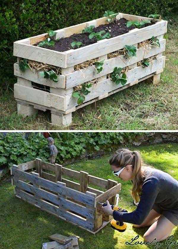 24 Highly Creative and Clever Gardening Tricks to Enhance Garden homesthetics decor (1)