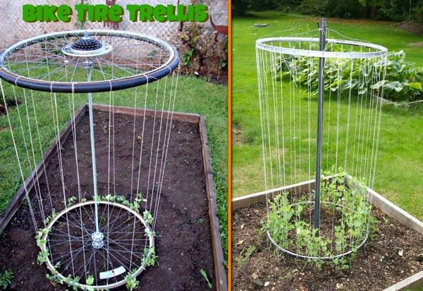 24 Highly Creative and Clever Gardening Tricks to Enhance Garden homesthetics decor (11)