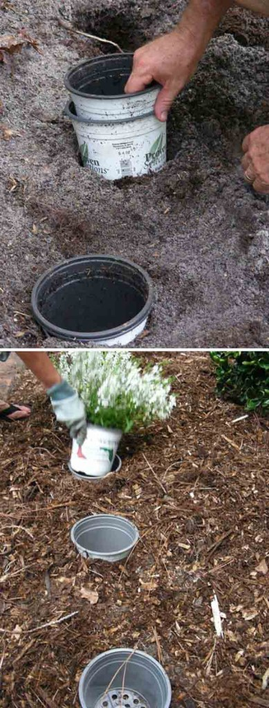 24 Highly Creative and Clever Gardening Tricks to Enhance Garden homesthetics decor (4)