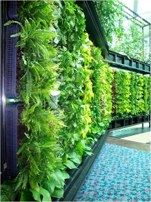 High Quality 25 Mesmerizing Vertical Garden Ideas That Will Refresh Your Decor  Homesthetics Decor (10)