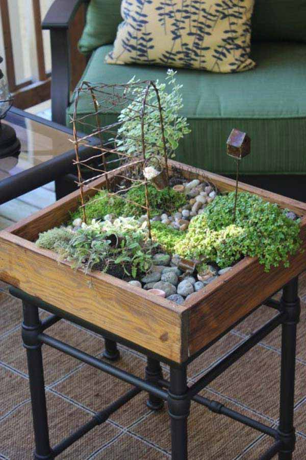 #1 Complete The Coffee Table Area With A Miniaturized Indoor Garden