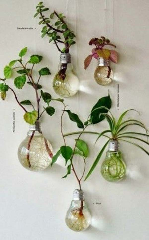 25+ Smart Miniaturized Indoor Garden Projects That You Would Really Love homesthetics decor (18)