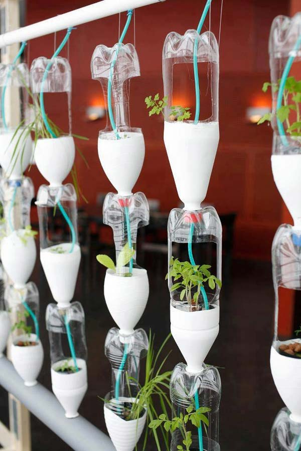 25+ Smart Miniaturized Indoor Garden Projects That You Would Really Love homesthetics decor (22)