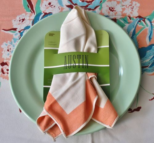 37. USE PAINT CHIPS AS NAPKIN HOLDERS