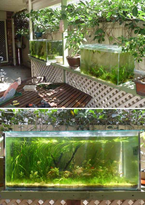 21 small garden ideas that will beautify your green world for Small outside fish ponds