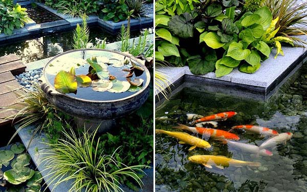 21 small garden backyard aquariums ideas that will for Fish ponds for small gardens