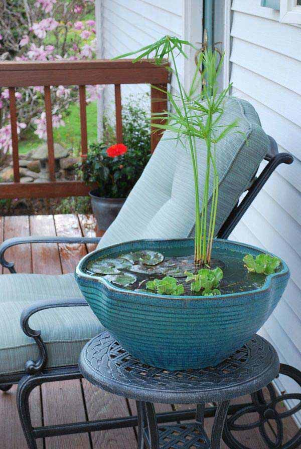 24 Fairy Tale Charming Low-Budget DIY Mini Ponds In Pots To Do homesthetics decor (6)