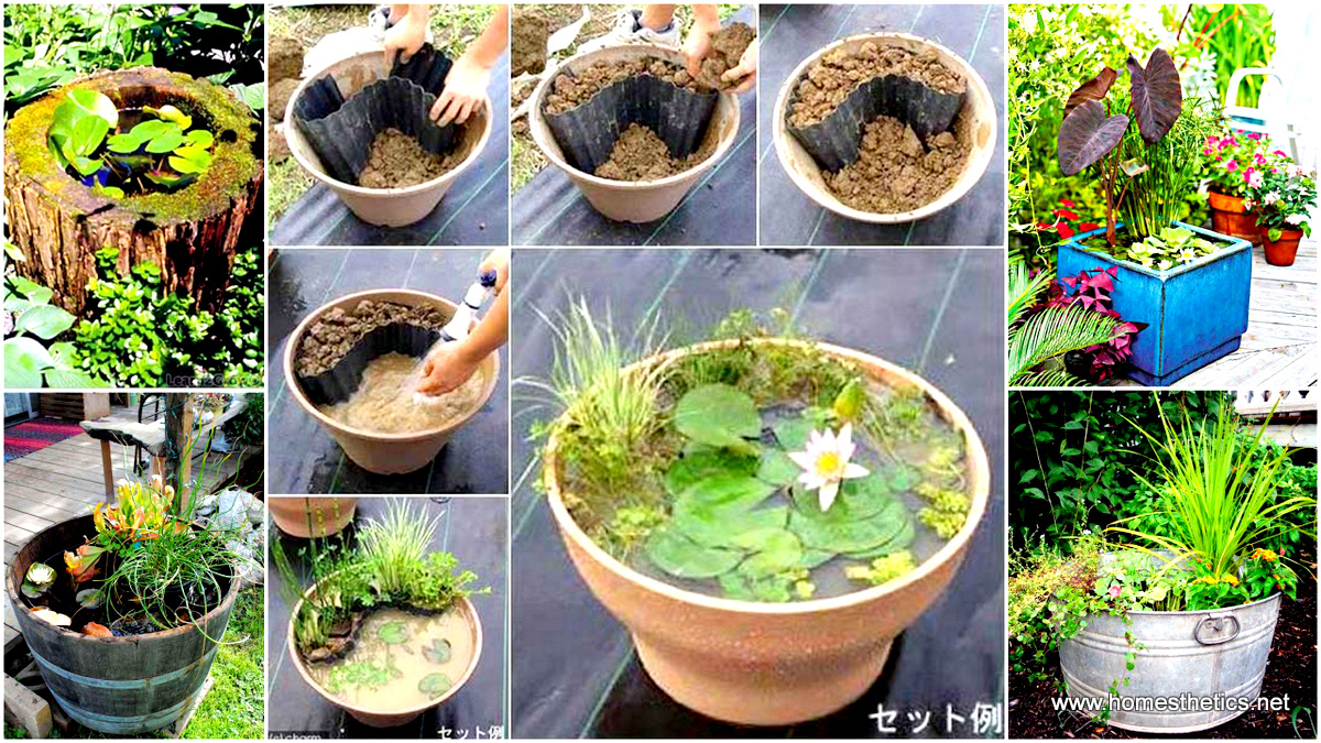 simple yet charming DIY project low budget DIY mini ponds in pots.