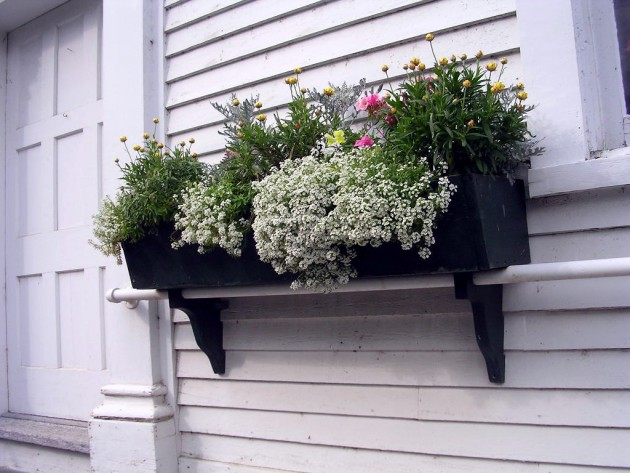 19 Simply Breathtaking Flower Box Ideas to Accessorize Windows With Greenery homesthetics flower decor (15)