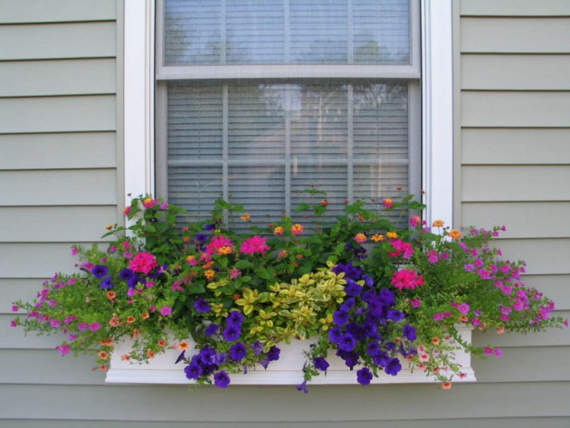 19 Simply Breathtaking Flower Box Ideas to Accessorize Windows With Greenery homesthetics flower decor (16)