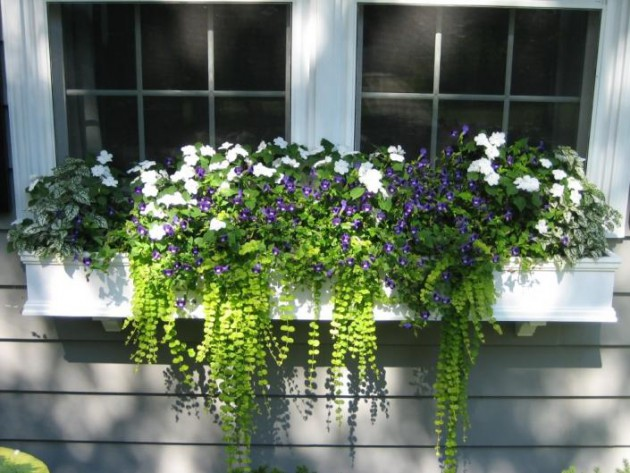 19 Simply Breathtaking Flower Box Ideas to Accessorize Windows With Greenery homesthetics flower decor (4)