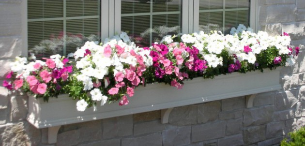 19 Simply Breathtaking Flower Box Ideas to Accessorize Windows With Greenery homesthetics flower decor (7)