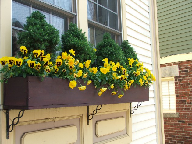 19 Simply Breathtaking Flower Box Ideas to Accessorize Windows With Greenery homesthetics flower decor (8)