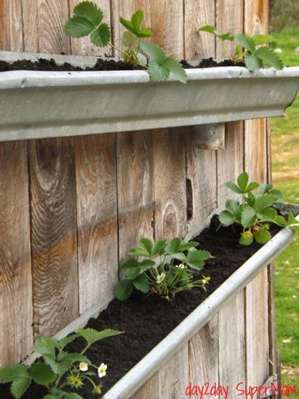 23 Extraordinary Beautiful Ways to Repurpose Rain Gutters in Your Household homesthetics diy projects (11)