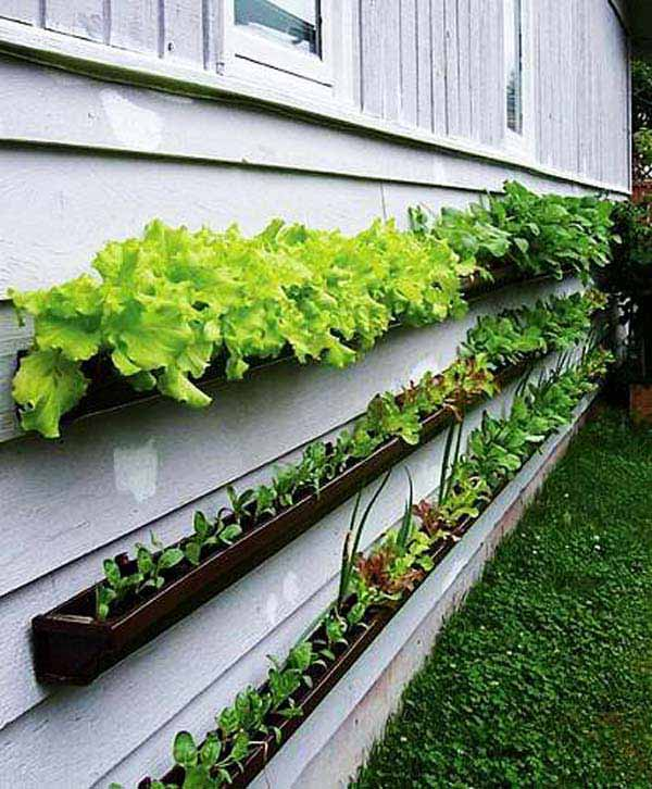 23 Extraordinary Beautiful Ways to Repurpose Rain Gutters in Your Household homesthetics diy projects (18)