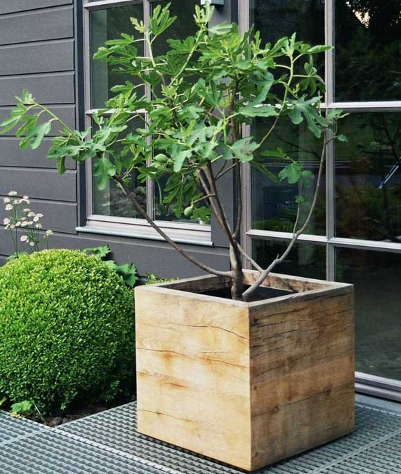 Wonderful 25 Insanely Beautiful Wooden Planter Ideas To Start Right Away Homesthetics  Landscape Design (1)