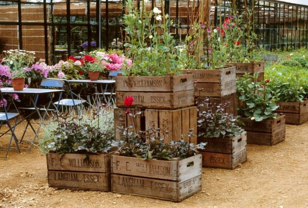 Image result for beautiful planters